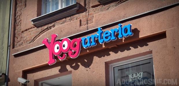 yoogurteria (3)