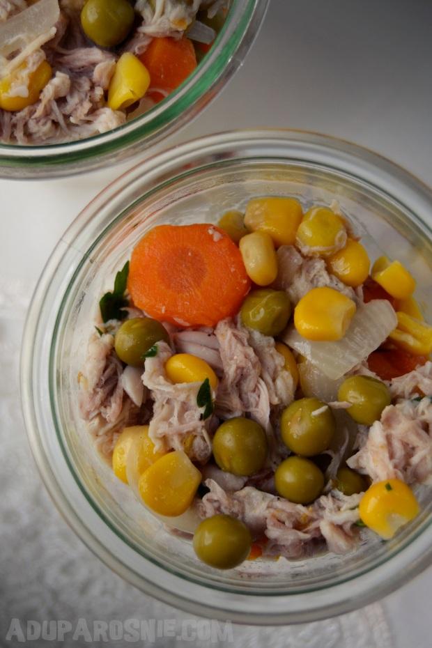 potrawka z kurczaka z ryżem (1)